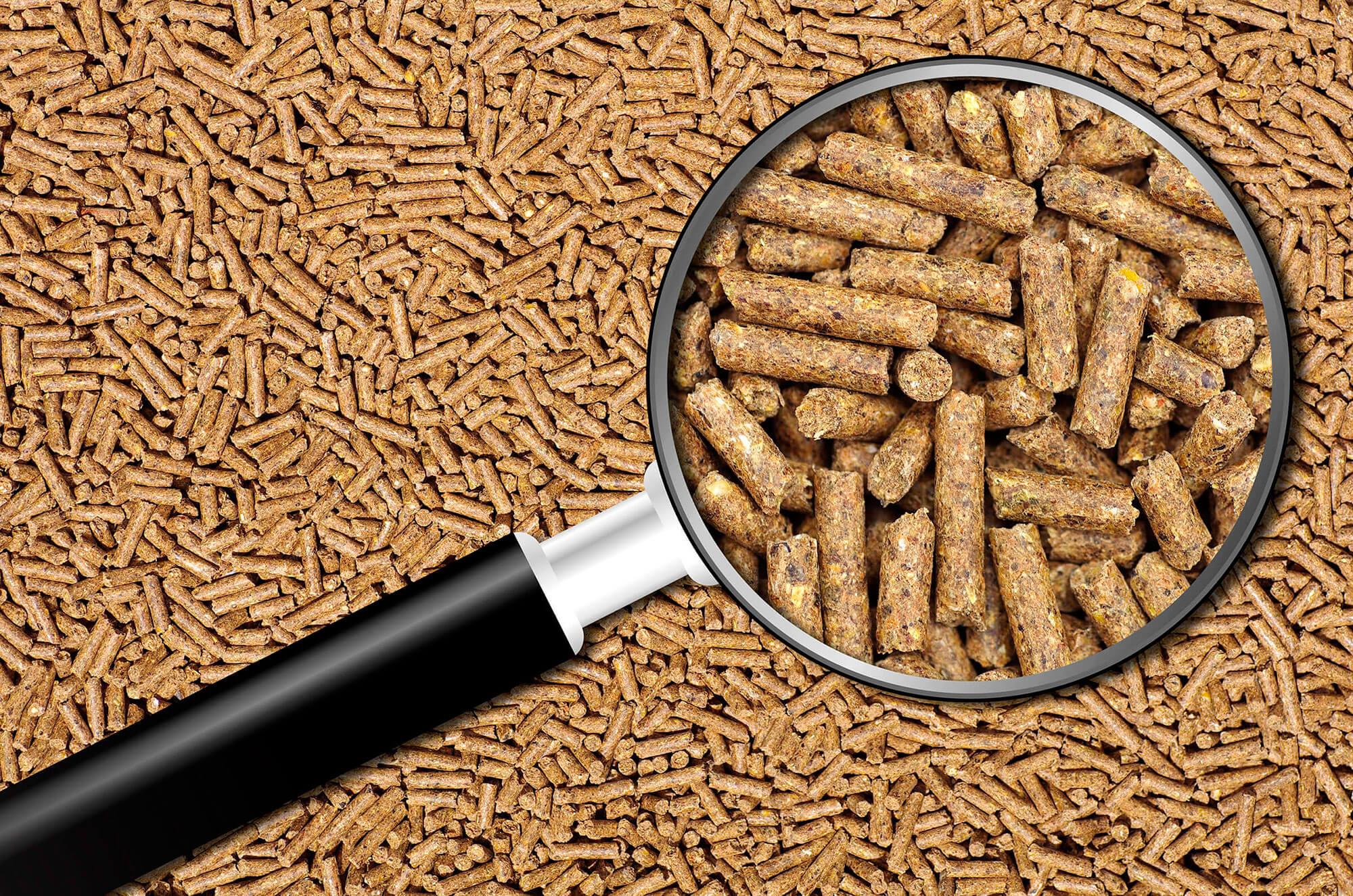 Nutrición y salud animal